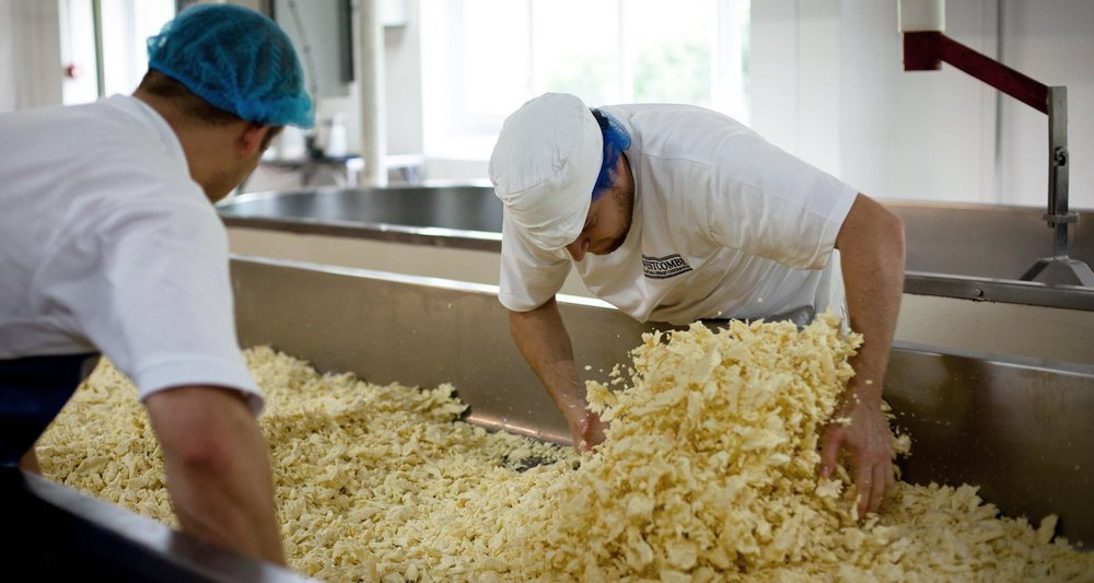 Westcombe Dairy cheese production
